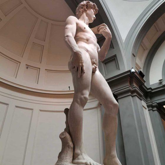 David Michelangelo Private Tour