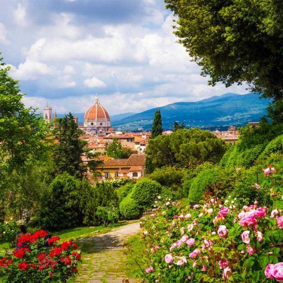 Florence Private Guided Tours