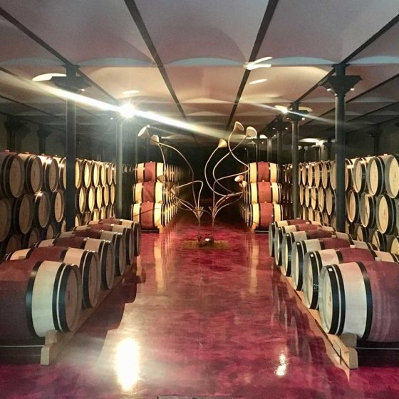 wine cellar guided tour tuscany